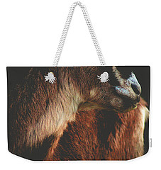 Weekender Tote Bag featuring the photograph Goat Love by Viviana  Nadowski