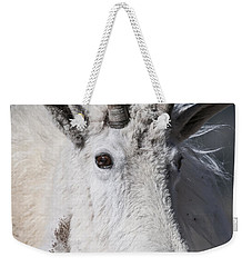 Weekender Tote Bag featuring the photograph Goat Portrait by Gary Lengyel
