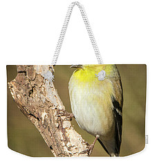 Weekender Tote Bag featuring the photograph Gold Finch by David Waldrop