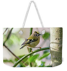 Goldcrest Weekender Tote Bag by Matt Malloy