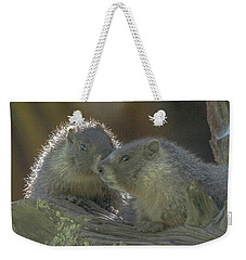 Golden Bellied Marmot Weekender Tote Bag