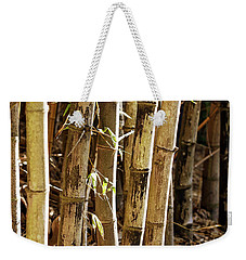 Weekender Tote Bag featuring the photograph Golden Canes by Linda Lees