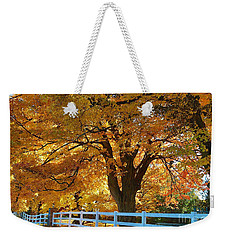 Weekender Tote Bag featuring the photograph Golden Curtain by Robert Pearson