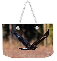 Weekender Tote Bag featuring the photograph Golden Eagle Flying by Torbjorn Swenelius