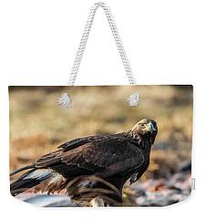Golden Eagle's Glance Weekender Tote Bag by Torbjorn Swenelius