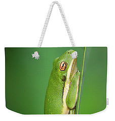 Golden Eye Weekender Tote Bag