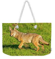 Golden Eyes Weekender Tote Bag by Marc Crumpler