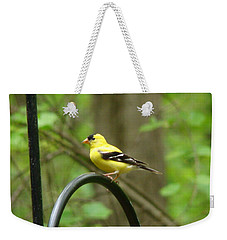 Golden Finch Weekender Tote Bag by Rand Herron