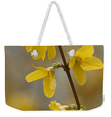 Golden Forsythia Weekender Tote Bag