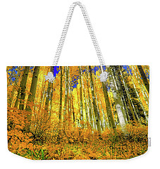 Weekender Tote Bag featuring the photograph Golden Light Of The Aspens - Colorful Colorado - Aspen Trees by Jason Politte