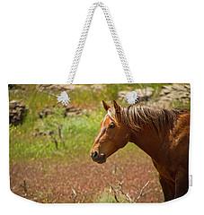 Golden Mustang Stallion Weekender Tote Bag