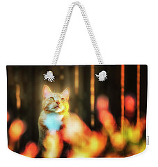 Golden Orange Tabby Weekender Tote Bag