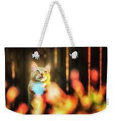 Golden Orange Tabby Weekender Tote Bag