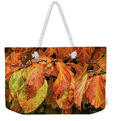 Weekender Tote Bag featuring the photograph Golden by Peggy Hughes