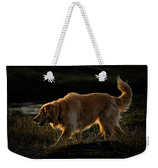 Weekender Tote Bag featuring the photograph Golden by Randy Hall