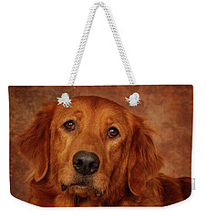 Weekender Tote Bag featuring the photograph Golden Retriever by Greg Mimbs