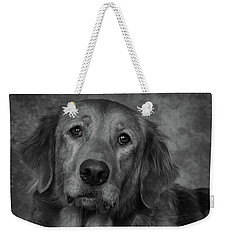 Weekender Tote Bag featuring the photograph Golden Retriever In Black And White by Greg Mimbs