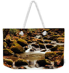 Weekender Tote Bag featuring the photograph Golden Stream In The Great Smoky Mountains by Debbie Green