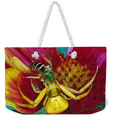 Goldenrod Crab Spider Misumena Vatia Weekender Tote Bag by Panoramic Images