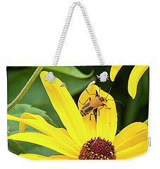 Weekender Tote Bag featuring the photograph Goldenrod Soldier Beetle by Ricky L Jones
