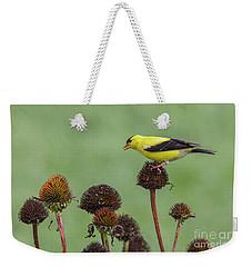 Goldfinch And Coneflowers Weekender Tote Bag