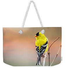 Goldfinch At Sunrise Weekender Tote Bag by Susan Capuano