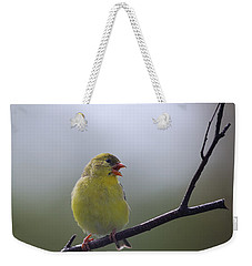 Weekender Tote Bag featuring the photograph Goldfinch Song by Susan Capuano