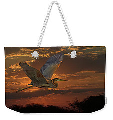 Goliath Heron At Sunset Weekender Tote Bag