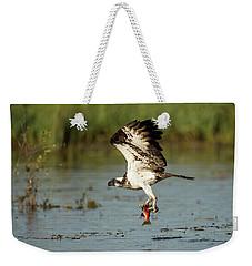 Sea Hawk  Weekender Tote Bag