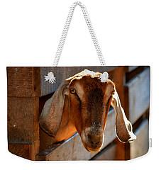 Good Morning To You  Weekender Tote Bag