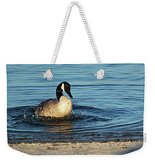 Goose In The Chesapeake Bay Weekender Tote Bag