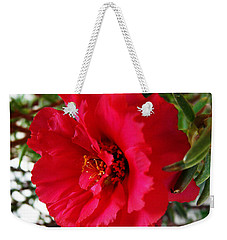 Weekender Tote Bag featuring the photograph Gorgeous by Jasna Dragun