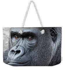Weekender Tote Bag featuring the photograph Gorillas In The Mist by Robert Bellomy