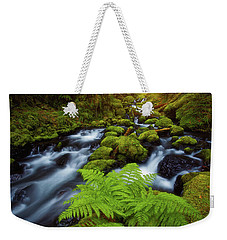 Weekender Tote Bag featuring the photograph Gorton Creek Fern by Darren White