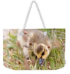 Gosling Nibble Weekender Tote Bag