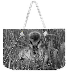 Weekender Tote Bag featuring the photograph Gosling Serenity by Sue Harper
