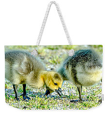 Weekender Tote Bag featuring the photograph Goslings Snacking by Steven Santamour