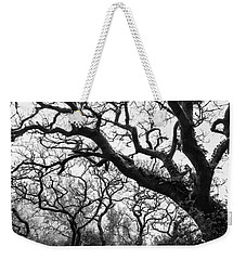 Gothic Woods II Weekender Tote Bag by Marco Oliveira