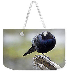 Weekender Tote Bag featuring the photograph Grackle Resting by AJ Schibig