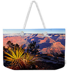 Weekender Tote Bag featuring the photograph Grand Canyon 31 by Donna Corless