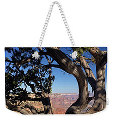 Grand Canyon No. 6 Weekender Tote Bag by Sandy Taylor