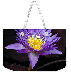 Weekender Tote Bag featuring the photograph Grand Entrance by Byron Varvarigos