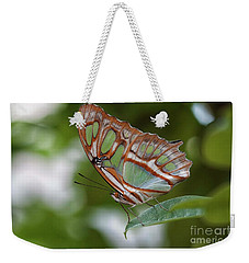 Grand Green Butterfly  Weekender Tote Bag