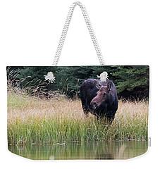 Grand Teton Moose Weekender Tote Bag