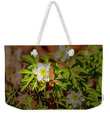 Weekender Tote Bag featuring the photograph Granny's-nightcap #g3 by Leif Sohlman