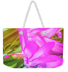 Weekender Tote Bag featuring the photograph Graphic Rainbow Christmas Cactus Flower by Aimee L Maher Photography and Art Visit ALMGallerydotcom