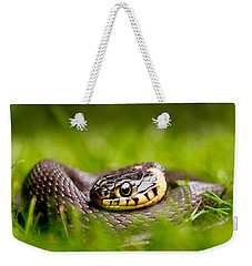 Grass Snake - Natrix Natrix Weekender Tote Bag by Roeselien Raimond