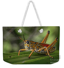 Grasshopper And Palm Frond Weekender Tote Bag