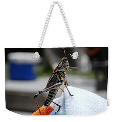 Dancing Grasshopper At The Pool Weekender Tote Bag