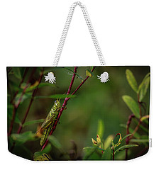 Grasshopper Holding On Weekender Tote Bag